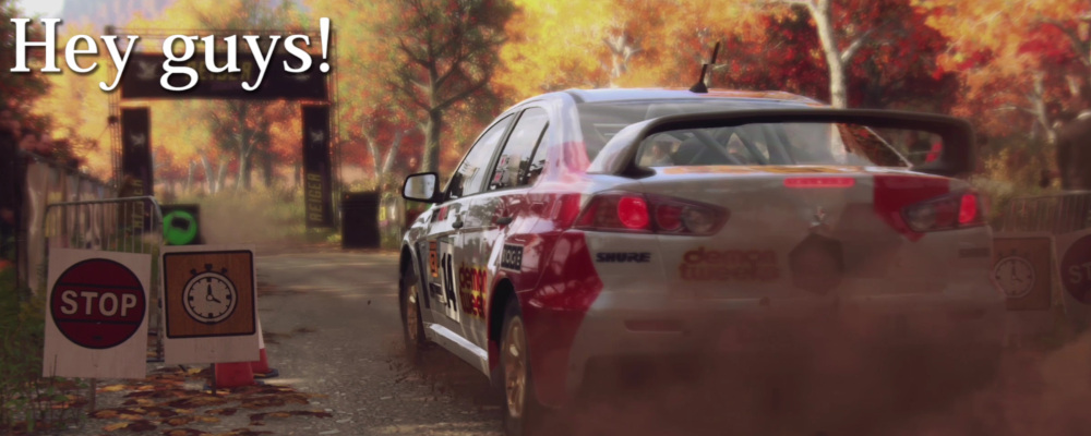 DiRT Rally 2.0 Lancer Evo X USA Setup 1